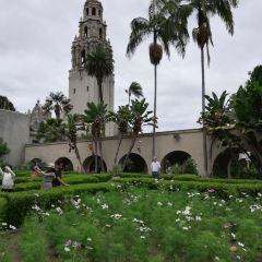 Alcazar Garden User Photo