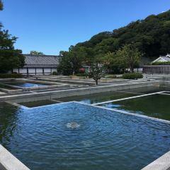 Matsuyama Castle Ninomaru Historical Site Garden User Photo