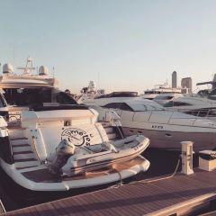 Royal Yachts Charter User Photo