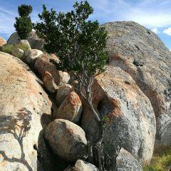 Gangilonga Rock User Photo