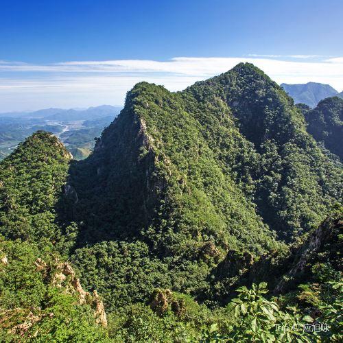 천문산 국가삼림공원