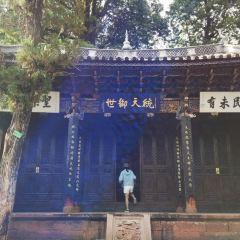 諾鄧文廟用戶圖片
