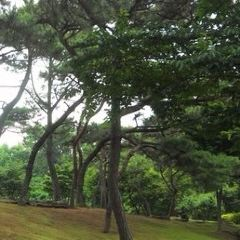 Korea Botanic Garden User Photo