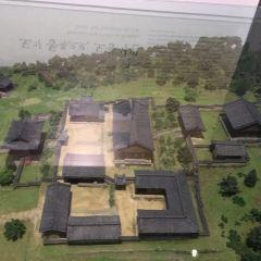 國立大邱博物館張用戶圖片