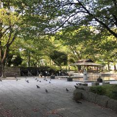 Shimozono Park User Photo