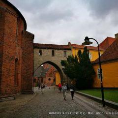 ロスキレ大聖堂のユーザー投稿写真