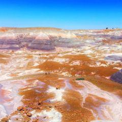 石化林用戶圖片