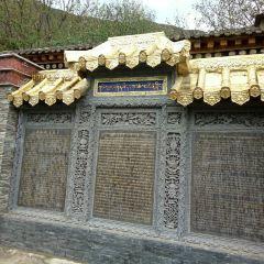 德爾隆寺用戶圖片