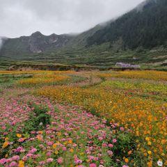 翠峰山用戶圖片