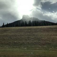 Sunshine Meadows User Photo