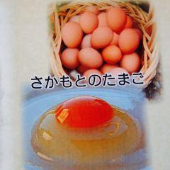 箱根自然薯之森山藥張用戶圖片