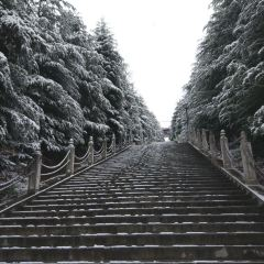 Longgang Park User Photo