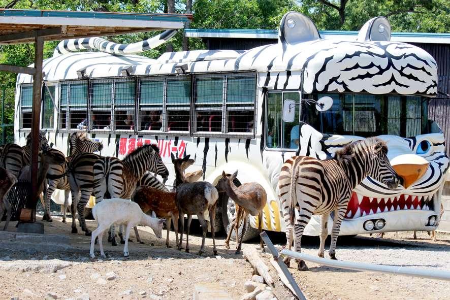 那須野生動物園門票