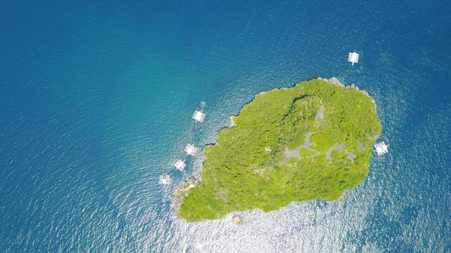 Gato Island