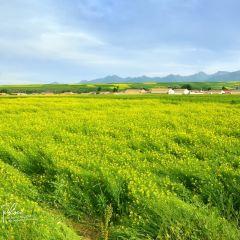 Qingshizuizhen User Photo
