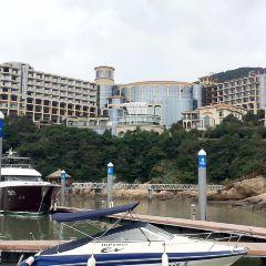 普陀國際遊艇會用戶圖片