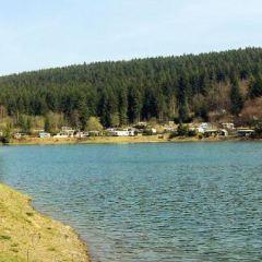 Harz User Photo