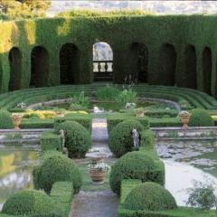 簡潔花園用戶圖片