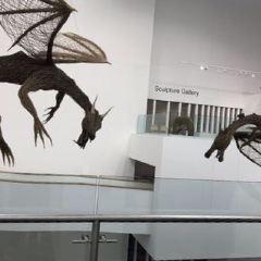Ulster Museum User Photo