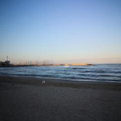 エルサレムビーチのユーザー投稿写真