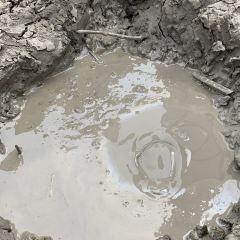 泥火山用戶圖片