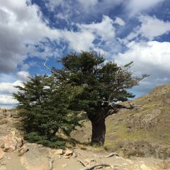 Intendencia Parque Nacional Los Glaciares User Photo