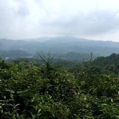 Duqiaoshan Forest Park User Photo