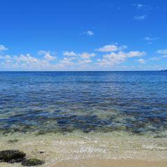 哈浦納海灘用戶圖片