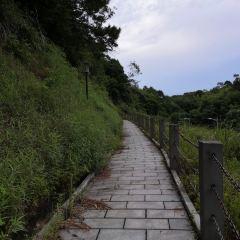 欽州林湖公園用戶圖片