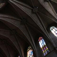 松樹聖母聖殿用戶圖片