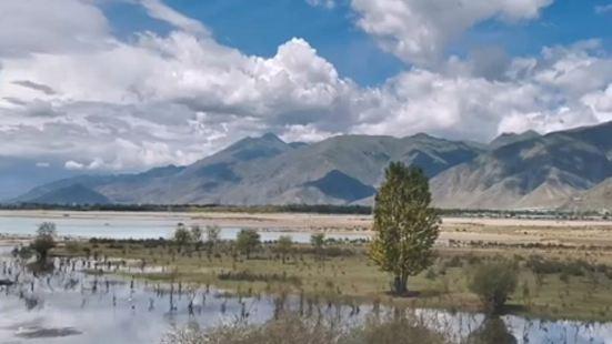 拉薩河沼澤濕地