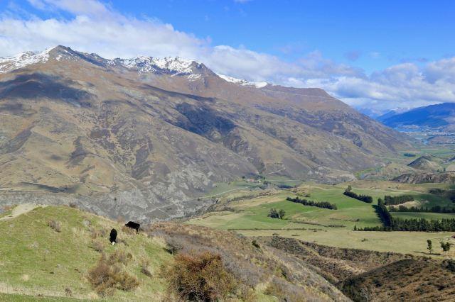 Mount Aspiring National Park