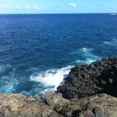 "Little Blowhole Reserve ""Endeavour Lookout"" User Photo"