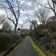 平和公園用戶圖片