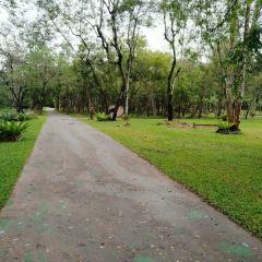 카오야이국립공원 여행 사진