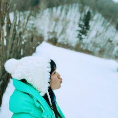 Snow valley User Photo