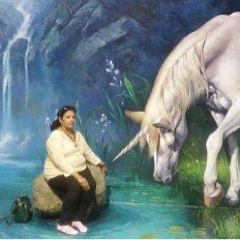 Art in Paradise User Photo