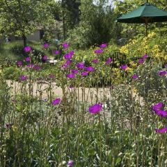 Mildred Mathias Botanical Gardens User Photo