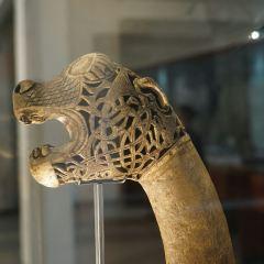 維京博物館用戶圖片