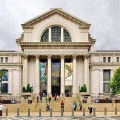 國立非洲藝術博物館用戶圖片