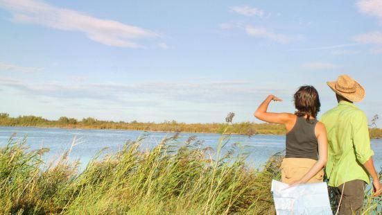 卡馬格濕地公園