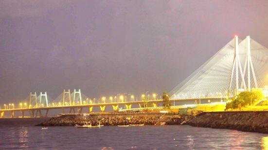 Bandra-Worli跨海大桥
