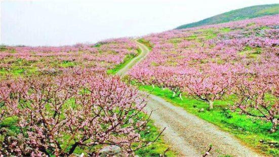 桂陽桃花溪風景區