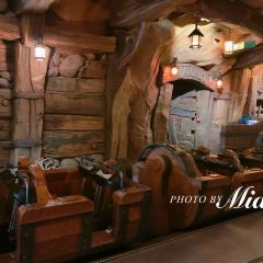 Seven Dwarfs Mine Train User Photo