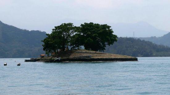 拉鲁岛是日月潭中的一个小岛,挺小的,现在上面是一些树木。乘坐