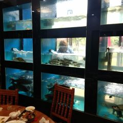 魚知築用戶圖片