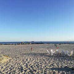 Ocean Beach用戶圖片
