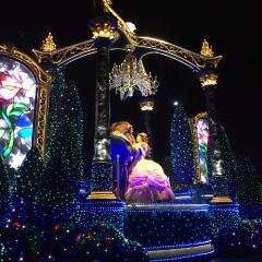 東京迪士尼樂園用戶圖片