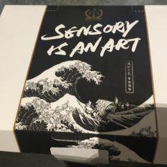 sensory ZERO用戶圖片