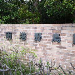 오사카 난코 야생조류공원 여행 사진